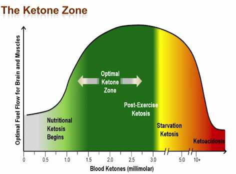 optimal-ketosis-range-2